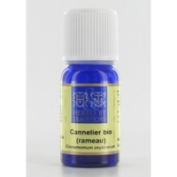 Huile Essentielle - Cannellier rameau (Cinnamomum zeylanicum) BIO - 10 ml