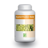 Cynorrhodon baie 300 mg 100 gelules