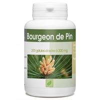 Bourgeon de Pin - 200 gelules e 200 mg