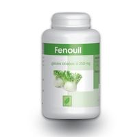 Fenouil semence 250 mg 200 gelules