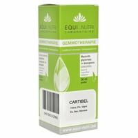Cartibel BIO : Frêne/Pin Montana/Pin Sylvestris/Vigne - 30 ml