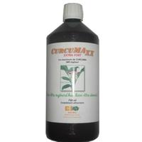 CURCUMAXx 750 ml - jus de curcumine (Curcuma) dont 95% de curcumine - curcumax