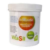 Articulasil Gel + MSM - Dexsil - Pot 500 ml