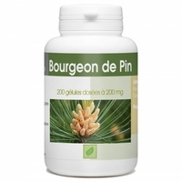 Bourgeon de Pin - 200 gelules e 200 mg