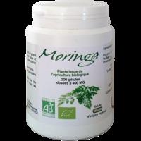 Moringa Bio 200 gélules végétales 400 mg
