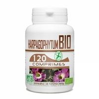 Harpagophytum bio 120 comprimes
