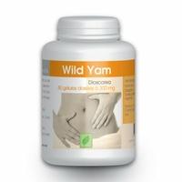 Wild Yam 16% Diosgenine - 80 gelules