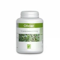 Olivier feuille - 210 mg - 100 gelules