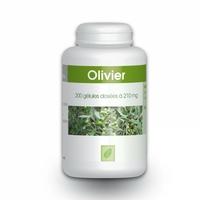Olivier feuille - 210 mg - 200 gelules