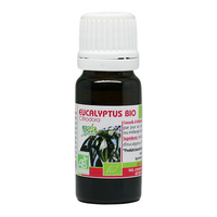 Eucalyptus citriodora BIO 10 ml