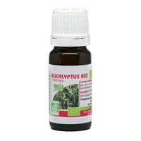 Eucalyptus globulus BIO 10 ml