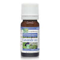 Lavande Officinale BIO 10 ml