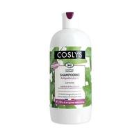 shampooing antipelliculaire etat pelliculaire 500 ml
