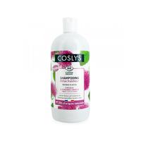 shampooing detox fraicheur cheveux à tendance grasse 500 ml