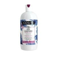 shampooing booster d'eclat cheveux gris et blancs 500 ml