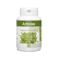Armoise - 250 mg - 100 gélules