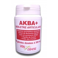 BOSWELLIA SERRATA Akba plus 60 gélules acides boswelliques