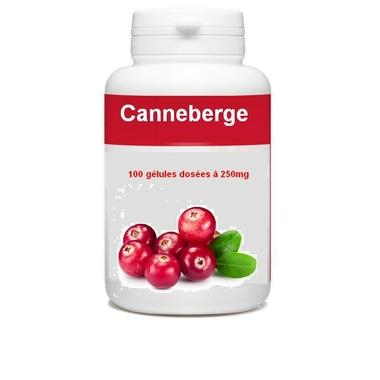 canneberge-100