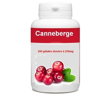 canneberge-200