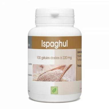 ispaghul-100-gelules