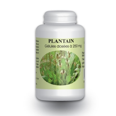 plantain-200-gelules