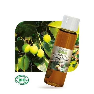 calophylle-bio-huile-vegetale-vierge-30-ml