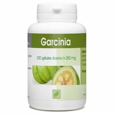 garcinia-cambogia-250-mg-200-gelules