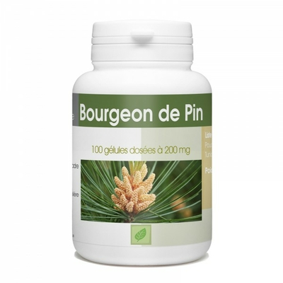 Bourgeon de Pin - 100 gelules e 200 mg