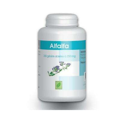 Alfalfa - 200 gelules