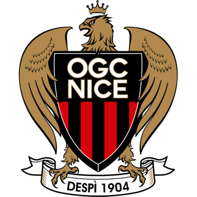 STICKER VITROPHANIE OGCNICE