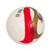 BallonM2A19bis
