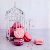 Toile macarons cage 28x28
