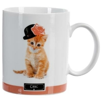 Mug photo chat CHIC orange 35CL