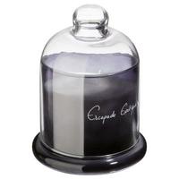 Bougie parfumée sous cloche - Escapade exotique 450g