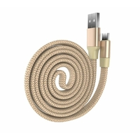 Câble DEVIA RING Y1 USB vers USB Type-C Doré 80cm