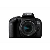 CANON EOS 800D + EFS 18-55mm f/4-5.6 IS STM