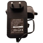 smart-charger-200-batterie-texas