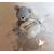 1-au coeur des arts-bonbonniere-boite a dragees-ours