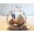 BV4-au coeur des arts-Enfant-bébé garcon et ours dans sa bulle