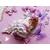 PP34B-Plaque de porte nuage bebe fille - au cœur des arts