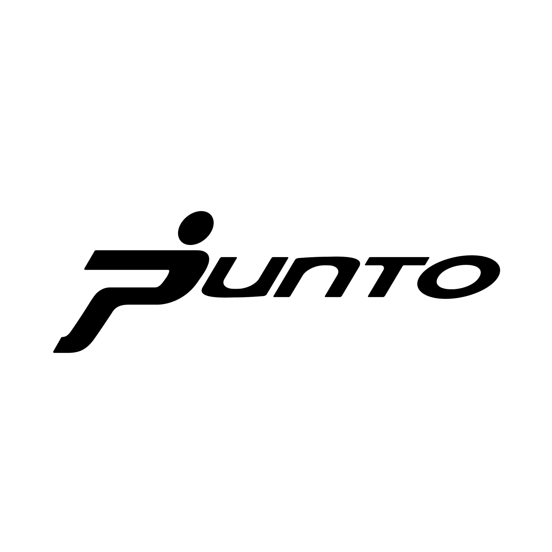 stickers-fiat-punto-ref9-autocollant-voiture-sticker-auto-autocollants-decals-sponsors-racing-tuning-sport-logo-min