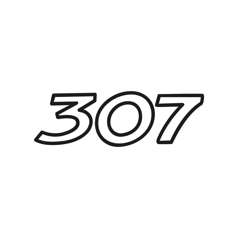 Autocollant Voiture Sticker Auto Logo Stickers Peugeot 307 Tuning ref52