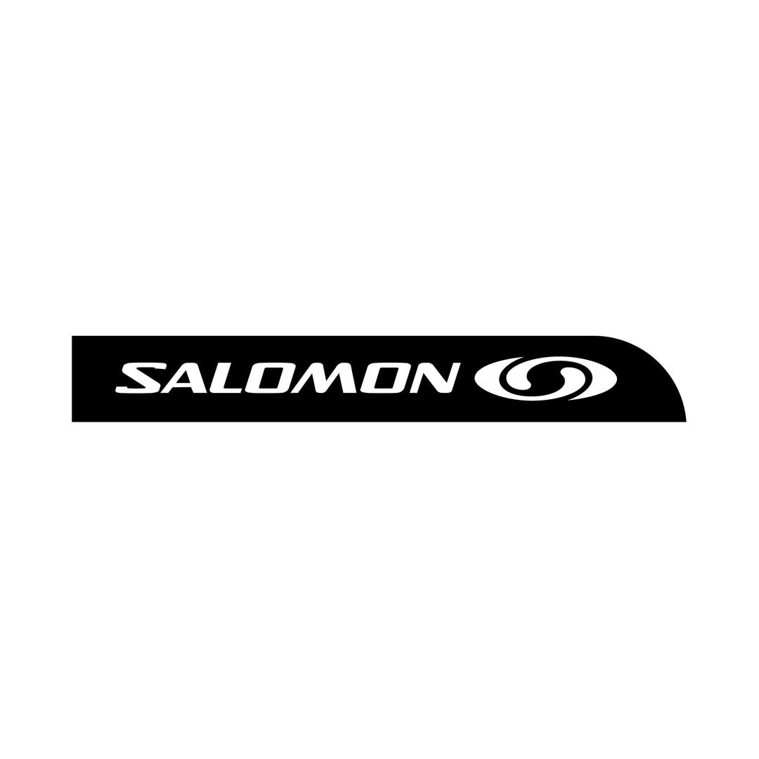 Stickers Salomon Snowboarding Logo