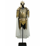 Armure - Game of Thrones (1)