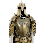 Armure - Game of Thrones (2)