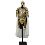 Armure - Game of Thrones (6)