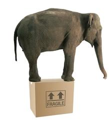 Livraison paquet