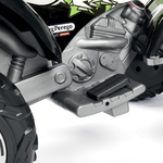 OR0100_Corral_T-Rex_330W_pedal