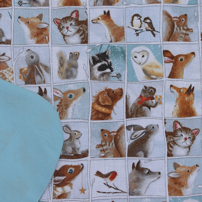 S_mes_animaux_2
