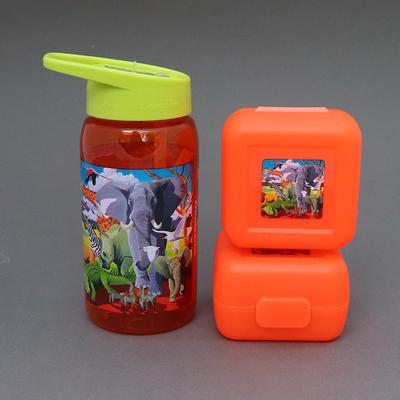 Lot deux boîtes et une gourde sans BPA Safari